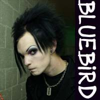 Bluebird_icon.jpg