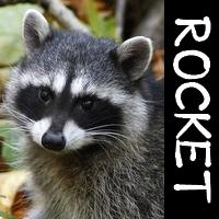 Rocket_icon.jpg